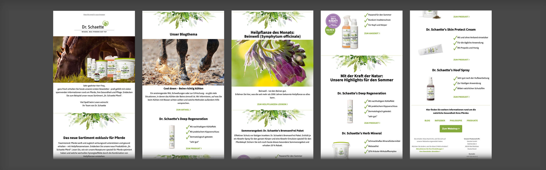 EBEP_181101_Relaunch_DrSchaette_Pferd_web_04